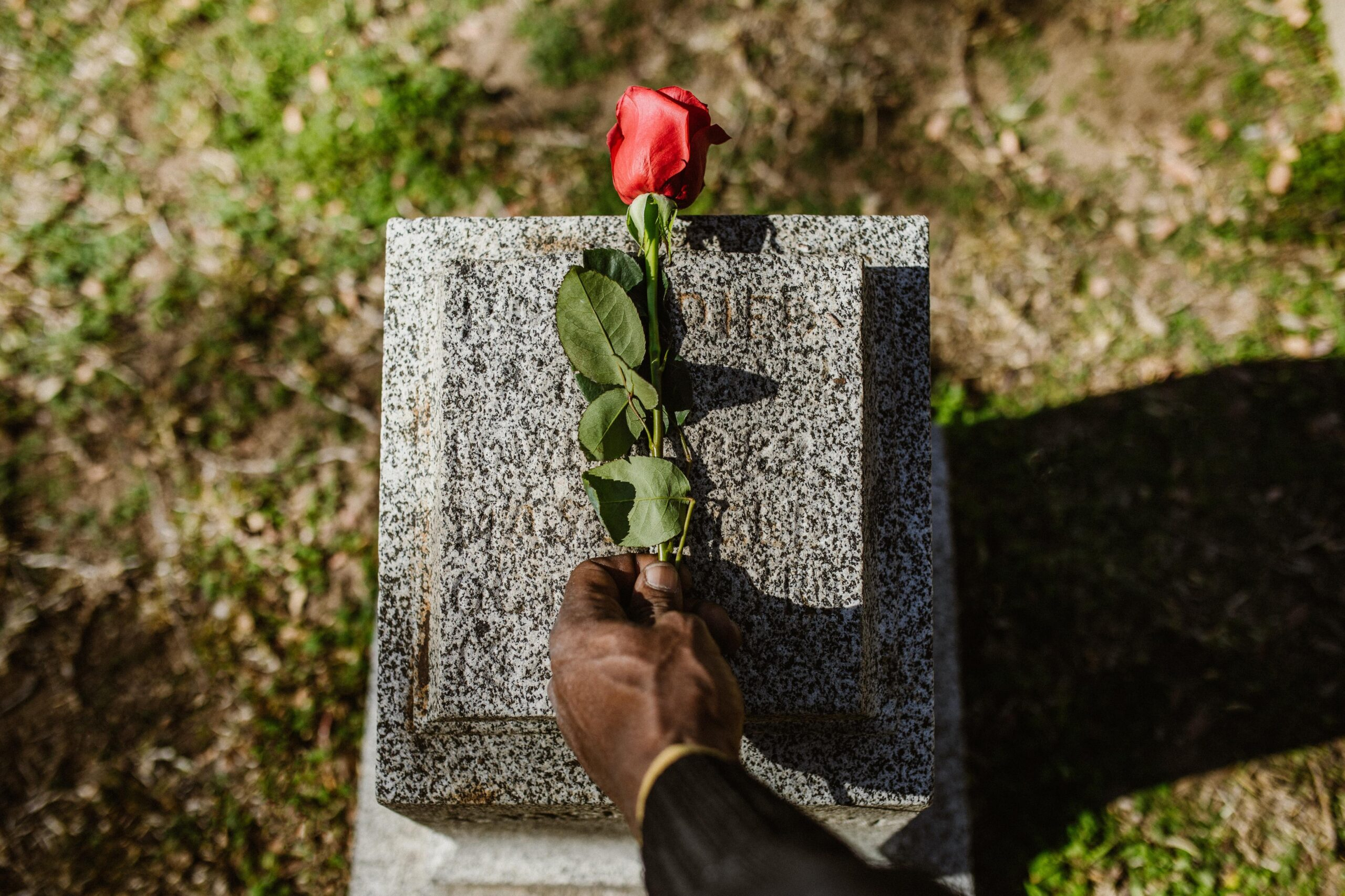 Image of someone placing a flower on a gravestone
